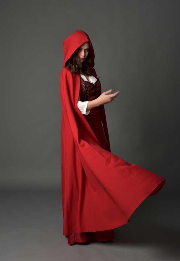 halloween handmaid costume