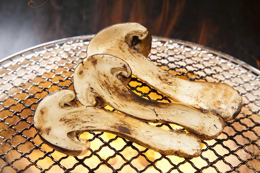 Charcoal mushrooms