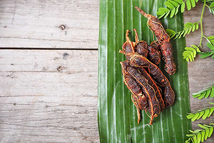 Tamarind dried pods