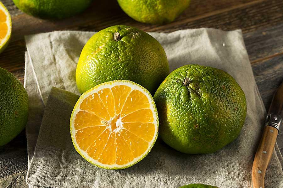 Ugli citrus fruits