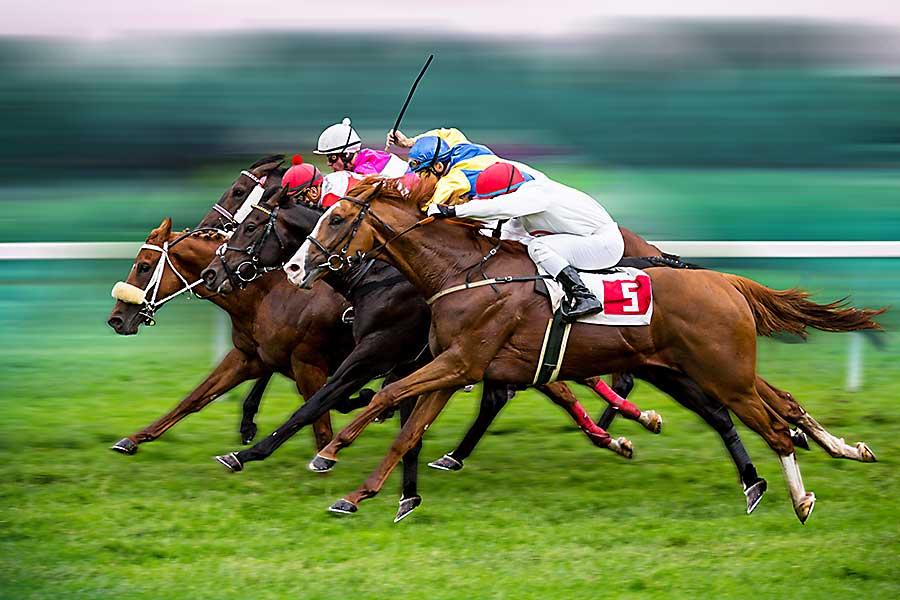 Melbourne Cup horse race