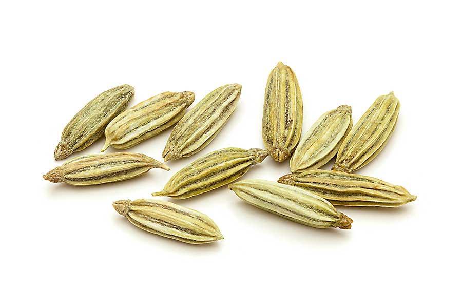 Anise seed macro