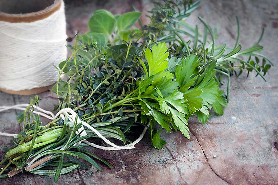 Bouquet garni - herbs: parsley, rosemary, oregano,