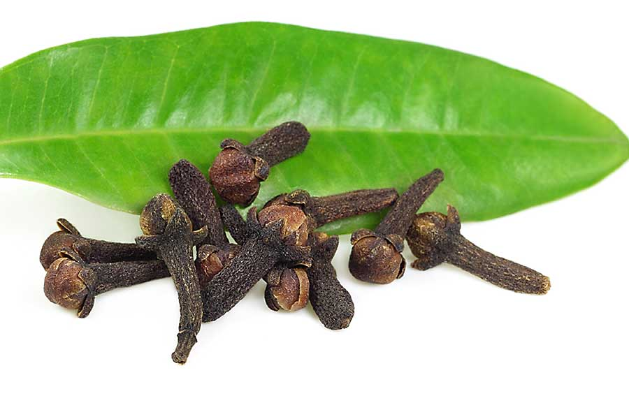 Dried cloves on the clove leaf