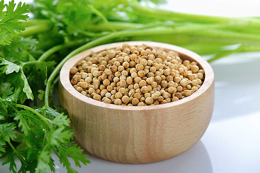 Coriander seed in the bowl