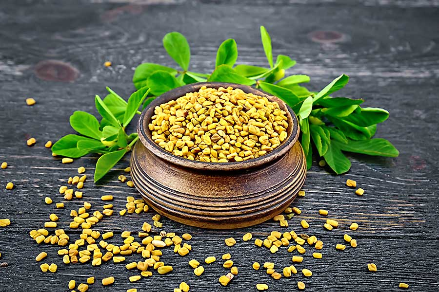 Fenugreek seed in the bowl