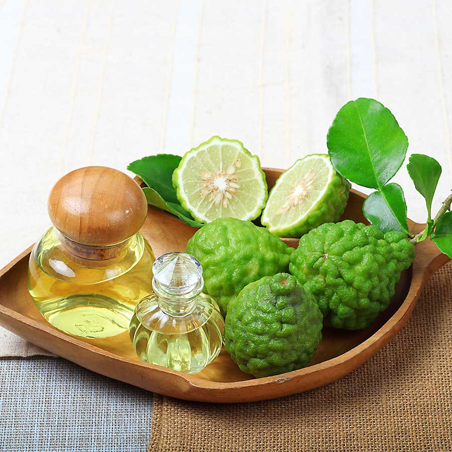 Kaffir lime fruits, leaves and essential kaffir lime oil