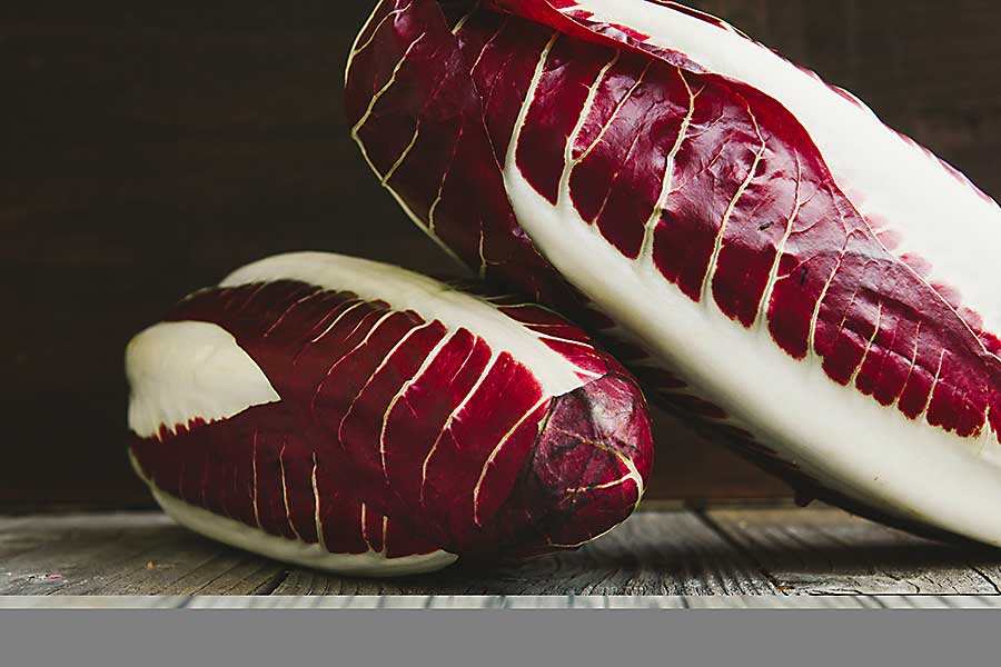Red endive