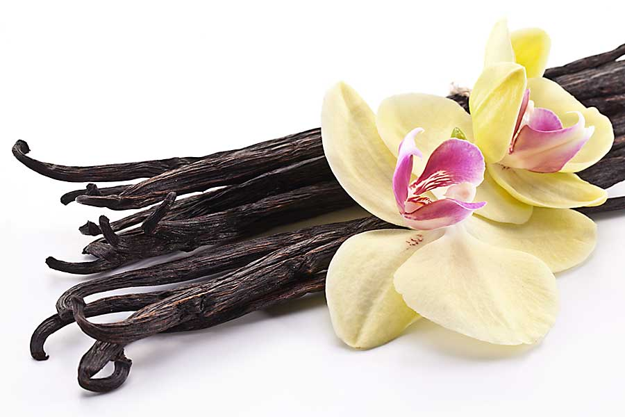 Vanilla dried beans and fresh flowers